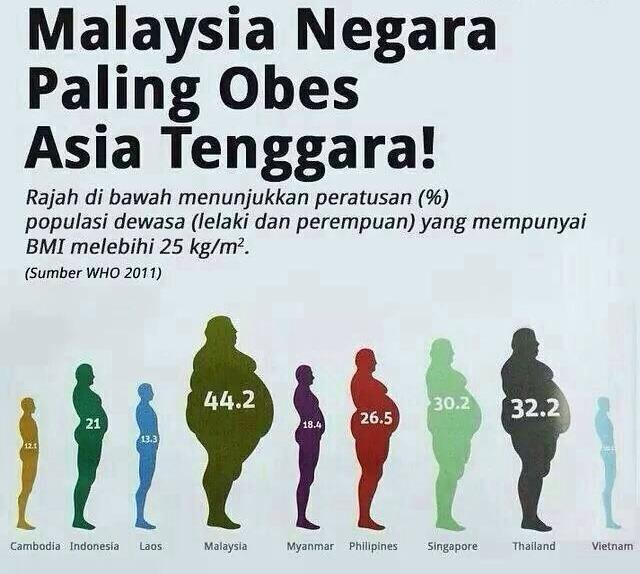 Hasil carian imej untuk statistik kesihatan malaysia